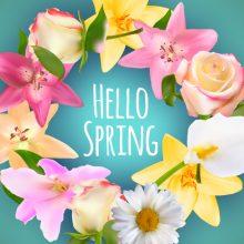 Hello Spring…March 20