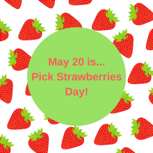 May 20…Pick Strawberries Day!