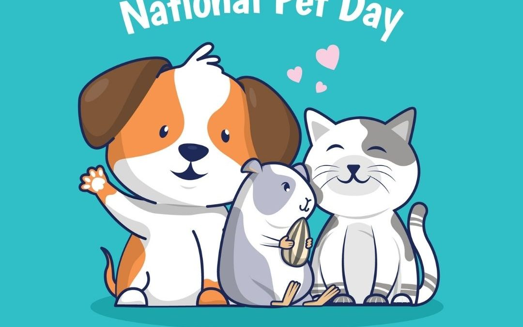 National Pet Day (4.11.21)